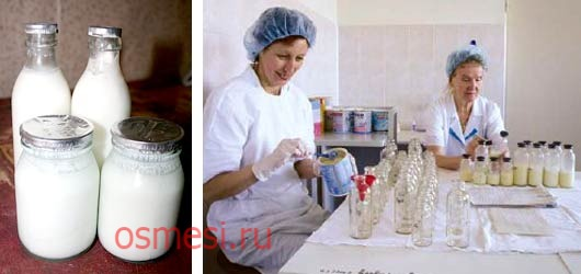 Какую смесь дают на молочной кухне